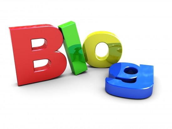 blogging newbie guide