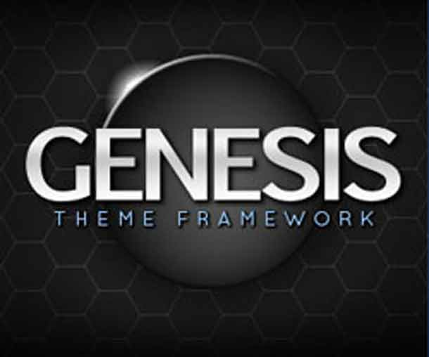 how to import all in one seo into genesis framework