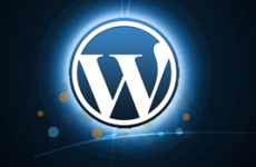adding excerpts to wordpress