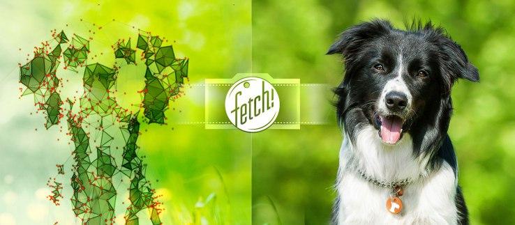 Microsoft Fetch App